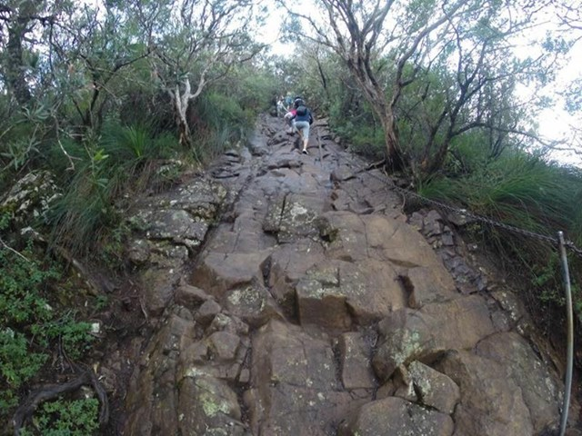 Trail to the summit of mt warning that has beautiful 360 degree