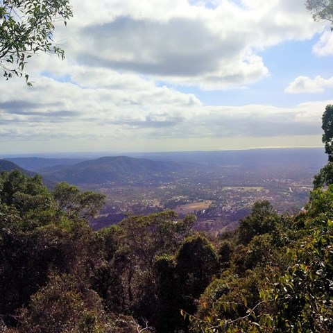 Mt Nebo Lookout Track