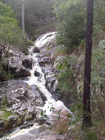 https://abw.blob.core.windows.net/img/qld/brisbane-forest-park-d-aguilar-national-park/mt--cootha/simpsons-falls-and-eugenia-circuit/7811.jpg
