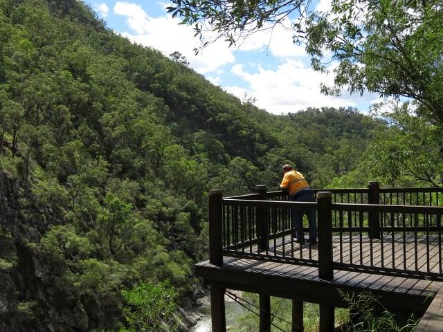 Cedar Creek Falls Aussie Bushwalking